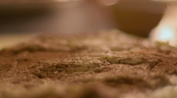Nigella Lawson's cat pav dessert on Saturday Kitchen