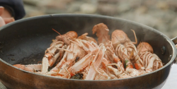 Josh's Scottish langoustine with butter and fresh herbs on Mary Berry Everyday