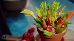 Michel Roux Jr hummus with a dukkah spice mix served in a flower pot on Hidden Restaurants