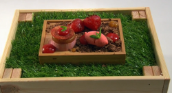 Ellis's strawberry fields dessert on the Great British Menu
