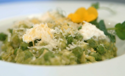 Ulrika Jonsson 's pea ricotta and lemon zest risotto on Celebrity Masterchef 2017