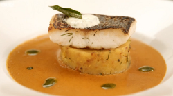 Suresh's pan fried hake, masala mash potatoes with a mango and coconut curry sauce dish on ...