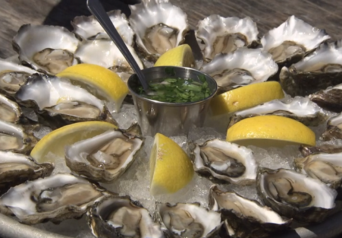 Terry's oysters with hogwash sauce on Rick Stein's Road To Mexico