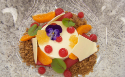 Octavia's orange and vanilla panna cotta with rhubarb and white chocolate on  MasterChef:  ...