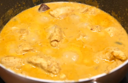 Majula's low fat Korma curry on on Food unwrapped diet Special
