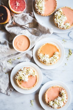 GRAPEFRUIT CURD TARTS with CHAMOMILE WHIPPED CREAM