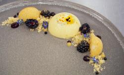 Moonira's  saffron and vanilla panna cotta with lemon polenta cake on Masterchef 2018