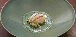 Moonira's scallops with celeriac sauce using Tommy Banks' recipe on Masterchef 2018