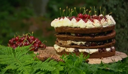 Hairy bikers' black forest gateau with black cherry jam on Saturday kitchen