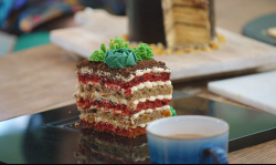 David's greenhouse growing moss cake on The Great British Bake Off 2019
