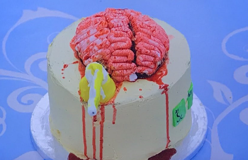Aleena's brain cake on Junior Bake off 2019