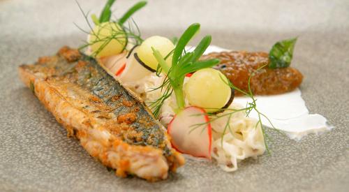 Arbinder's Kerala spiced mackerel with a mooli salad and a black salt yoghurt with goosebe ...