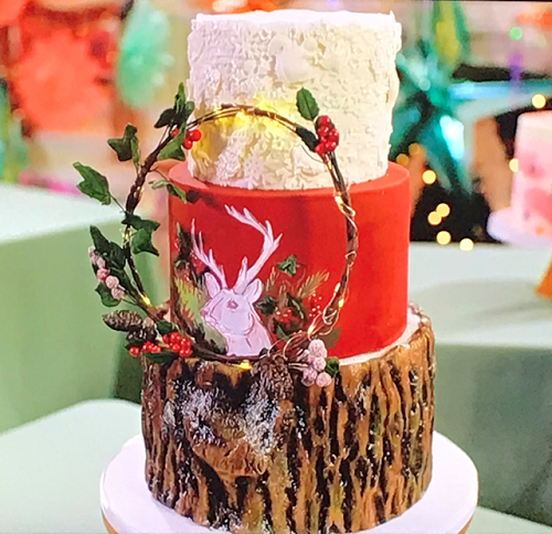 Becky's woodland inspired cake on Kirstie's Handmade Christmas