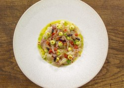 Michael Caines Sea Bream Ceviche with Avocado Vinaigrette on James Martin's Saturday Morning
