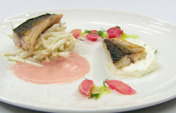 Claire's mackerel with rhubarb sauce, celeriac slaw and horseradish cream on Masterchef 2020