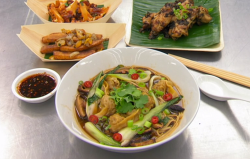Sam's Chinese takeaway dish with won ton noodle soup, chilli and garlic chicken wings, roa ...