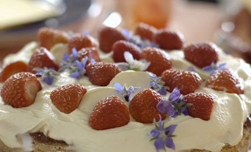Scott's Norwegian sponge cake with jam, cream and berries on Our Food, Our Family with Mic ...