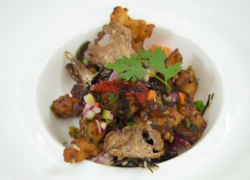 Santosh's crispy chilli chicken with sweet and sour vegetables on Masterchef The professio ...