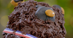 Dame Kelly Holmes. bear cake on The Great Celebrity Bake Off for SU2C